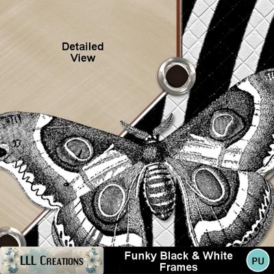Funky_black___white_frames-02