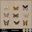 Butterfly_6_small