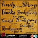Givingthanks-001_small