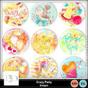 Dsd_crazyparty_badgesmm_small