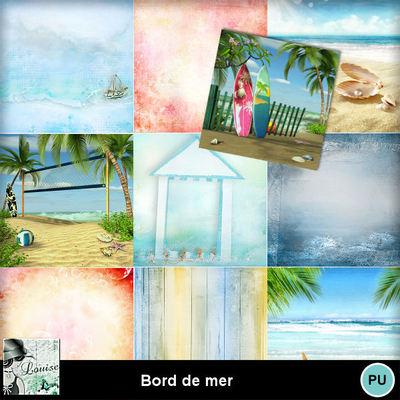 Louisel_borddemer_papiers_preview