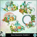 Louisel_doux_souvenirs_clusters1_preview_small