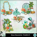Louisel_doux_souvenirs_clusters2_preview_small