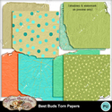 Torn_papers_preview_small