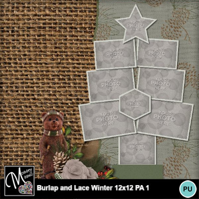 Burlap_and_lace_winter_pa1-008