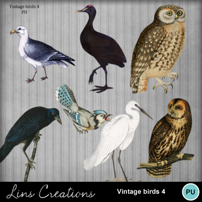 Vintage_birds_4