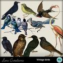 Vintagebirds_small