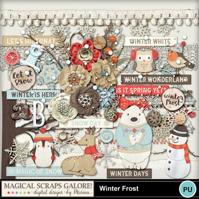 Winter-frost-2
