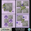 Lavender_beauty_12x12_template-001_small
