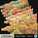 Ripped_edges_-_autumn-01_small