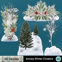 Snowy_winter_clusters-01_small