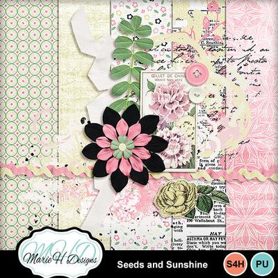 Seeds_and_sunshine_01