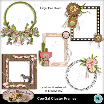 Cluster_frames_preview