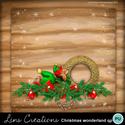 Christmaswonderland4_small