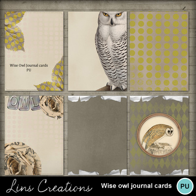 Lc_wiseowljournalcards