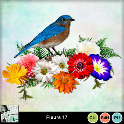 Louisel_cu_fleurs17_preview