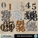 Nuts_about_numbers_-_1_small