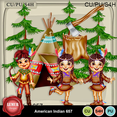 American_indian657