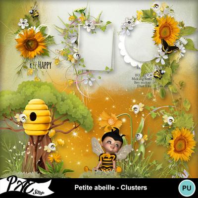 Patsscrap_petite_abeille_pv_clusters