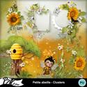 Patsscrap_petite_abeille_pv_clusters_small