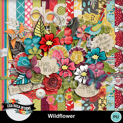 Lisarosadesigns_wildflower_fullkit