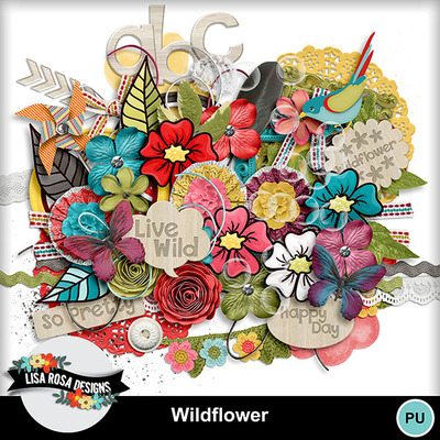 Lisarosadesigns_wildflower_elements