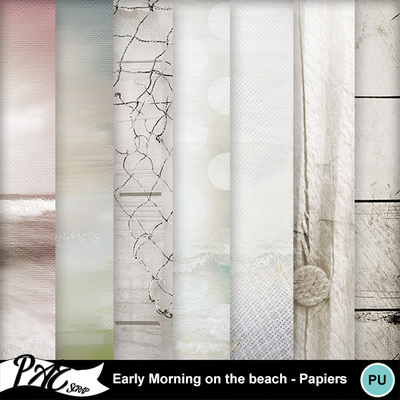 Patsscrap_early_morning_on_the_beach_pv_papiers
