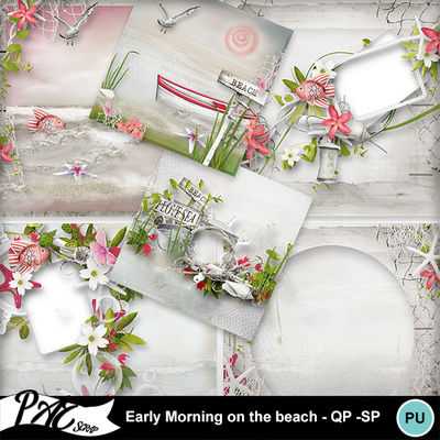 Patsscrap_early_morning_on_the_beach_pv_qp_sp