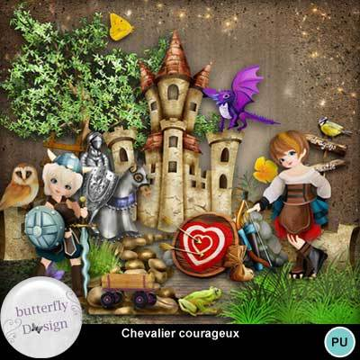 Butterflydsign_chevaliercourageux_pv_memo