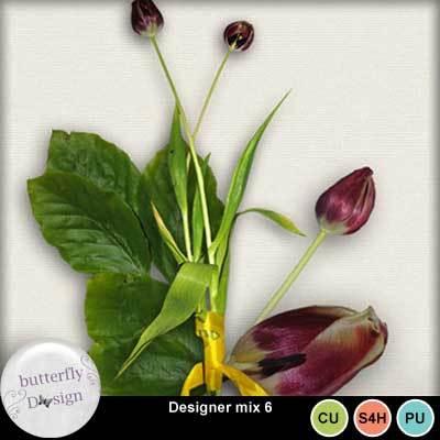 Butterflydsign_designermix6_pv_memo