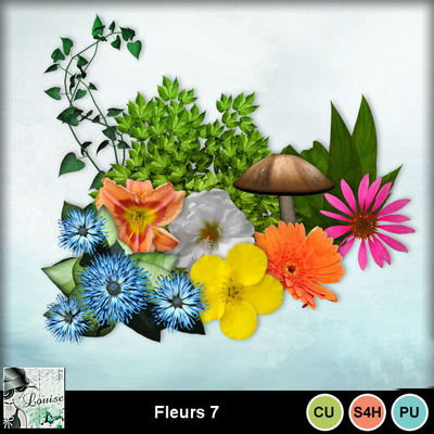 Louisel_cu_fleurs7_preview