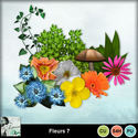Louisel_cu_fleurs7_preview_small