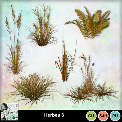 Louisel_cu_herbes3_preview