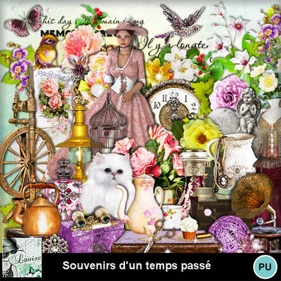 Louisel_souvenirs_dun_temps_pass__preview