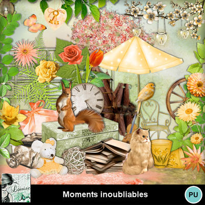 Louisel_moments_inoubliables_preview