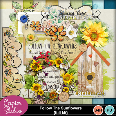 Follow_t_sunflowers_pv