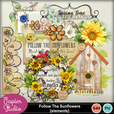Follow_t_sunflowers_el