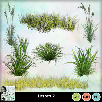 Louisel_cu_herbes2_preview