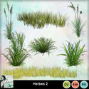 Louisel_cu_herbes2_preview_small