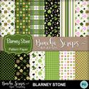 Blarneystone_patpaper_cover_400_small