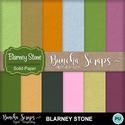 Blarneystone_solpaper_cvr_400_small