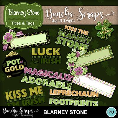 Blarneystone_wordart_cvr_400