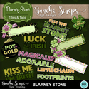 Blarneystone_wordart_cvr_400_small