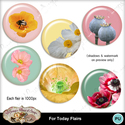Flairs_preview_small