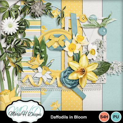 Daffodils-in-bloom-combo-01