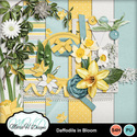 Daffodils-in-bloom-combo-01_small