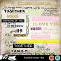 Patsscrap_family_forever_pv_wa_small