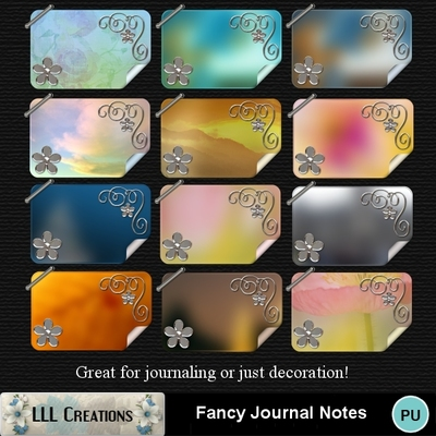 Fancy_journal_notes-01