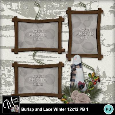 Burlap_lace_winter_12x12_pb-011