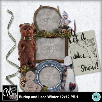 Burlap_lace_winter_12x12_pb-014